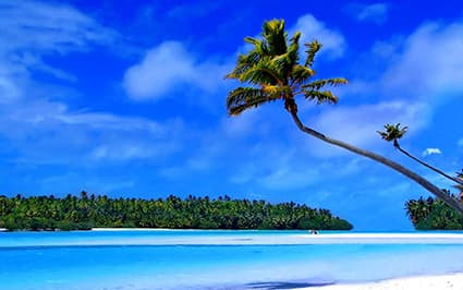 tropical island with deep blue water and a palm tree from the right