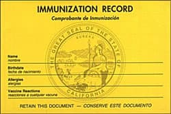 Immunization record, yellow card