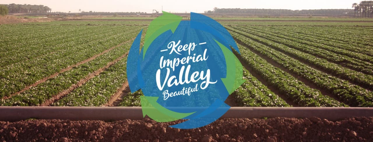 Photo of Imperial Valley agriculture